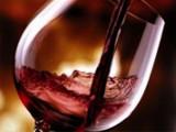 Extra De Luxe Wine Tasting